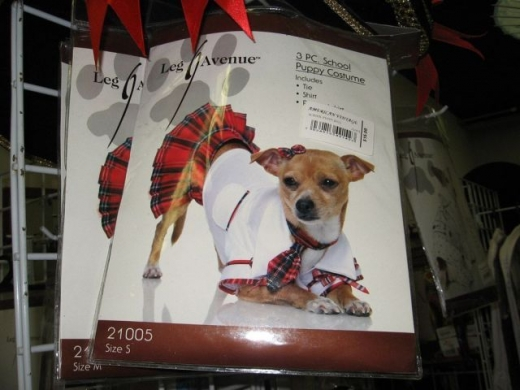 Slutty Dog Costume