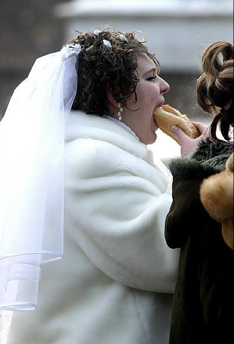 crazy wedding photos funny pictures cats funny pics